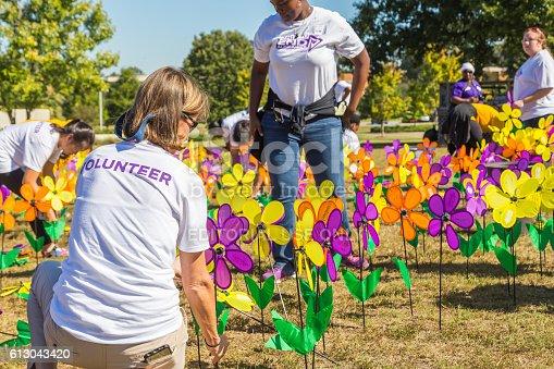 istock Alzheimers Promise Garden Volunteers 613043420