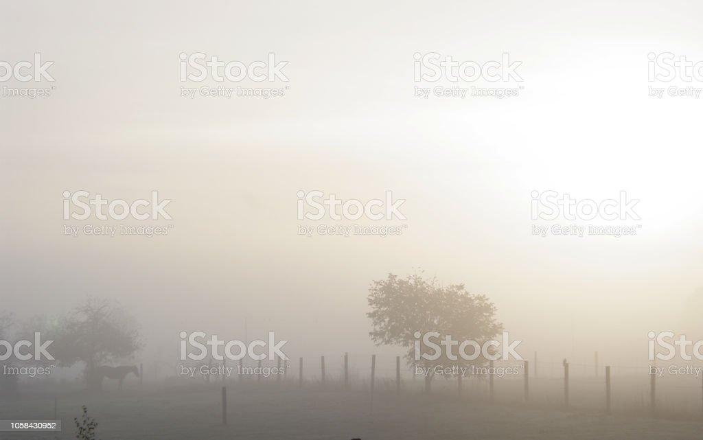 Am frühen Morgen stock photo