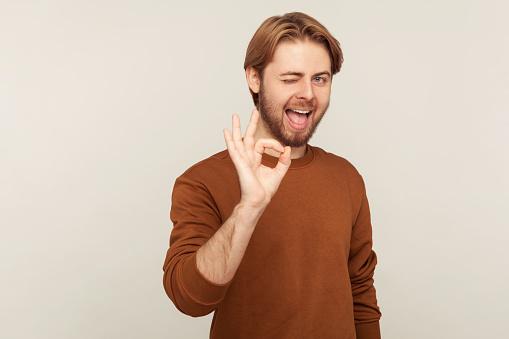 I am ok! Portrait of joyful handsome man with neat hair and beard wearing sweatshirt showing okay, approval sign