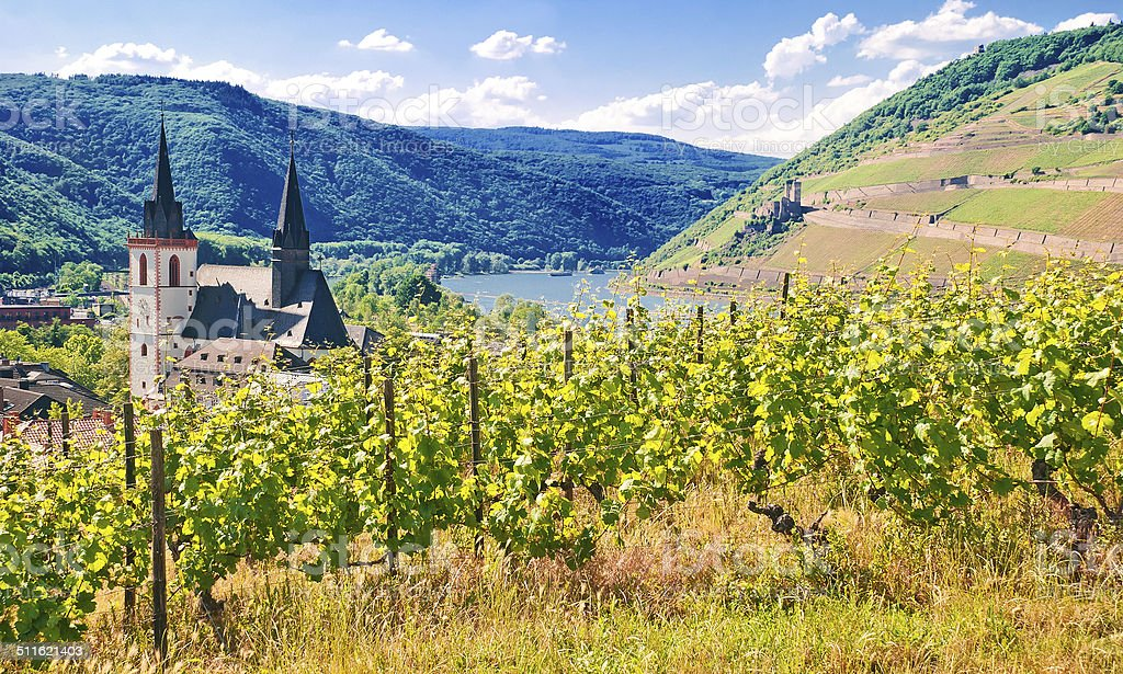 Am Rheinknie bei Bingen mit Mäuseturm und Burg Ehrenfels stock photo
