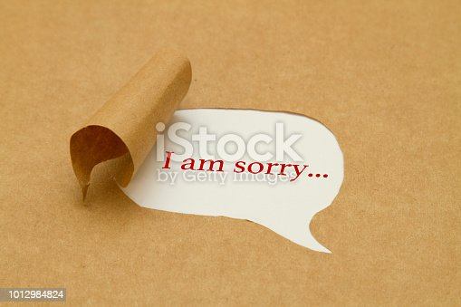 I am sorry written under torn paper.