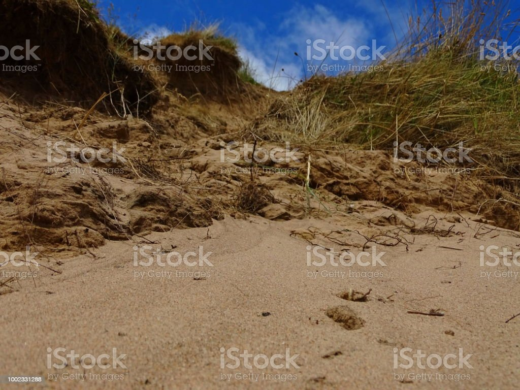 Am Strand – Foto