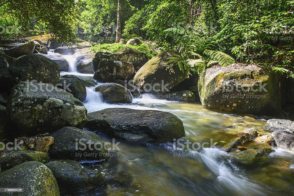 I am the waterfall royalty-free stock photo