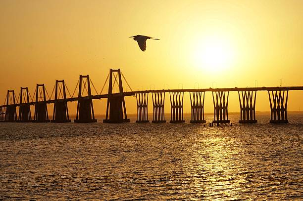 amanecer zuliano puente - maracaibo fotografías e imágenes de stock