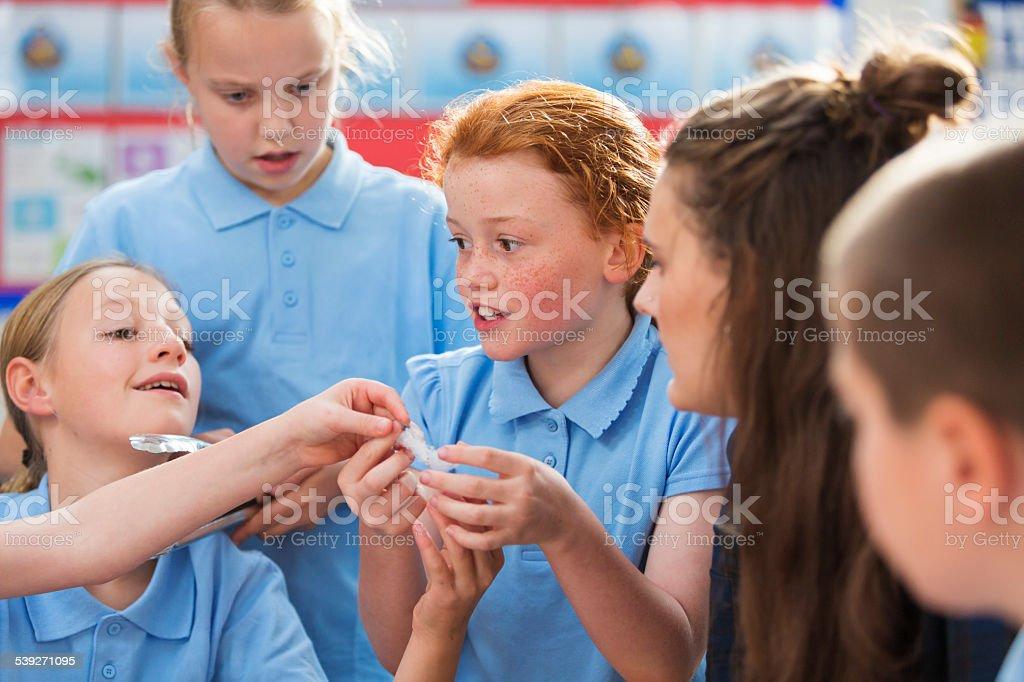 Amazed School Girls in Science Class stock photo