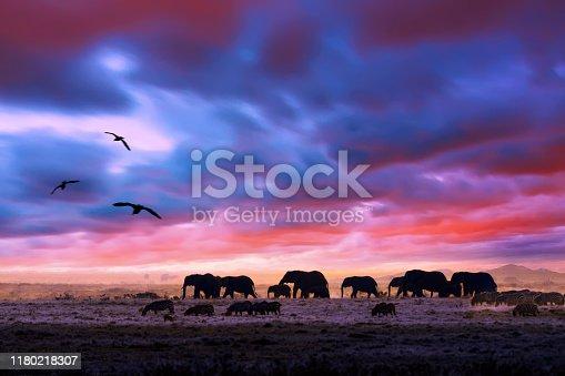 182061384 istock photo Amazing african dramatic sunset with walking elephants in savannah. Artistic fantastic safari landscape in Masai Mara National Reserve, Kenya. 1180218307