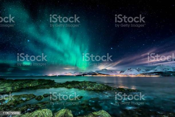 Photo of Amazing aurora borealis - northern lights - view from coast in Oldervik, near Tromso city -  north Norway