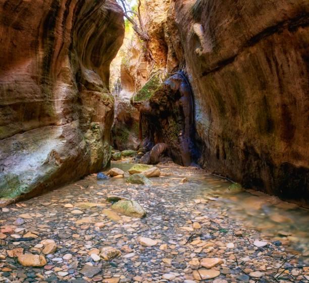 Erstaunliche Avakas Schlucht, Naturlandschaft, Zypern – Foto
