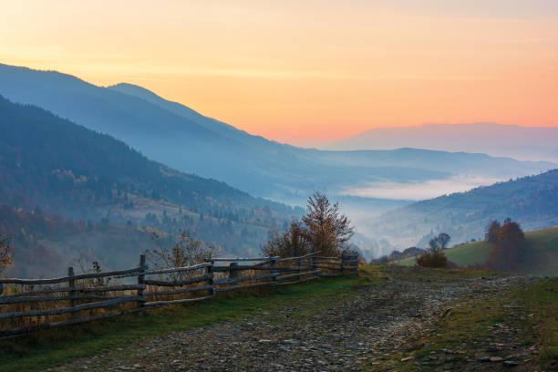 amazing beautiful rural area at dawn stock photo