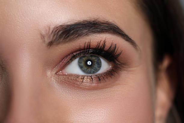 Amazing female green and grey coloured eye stock photo