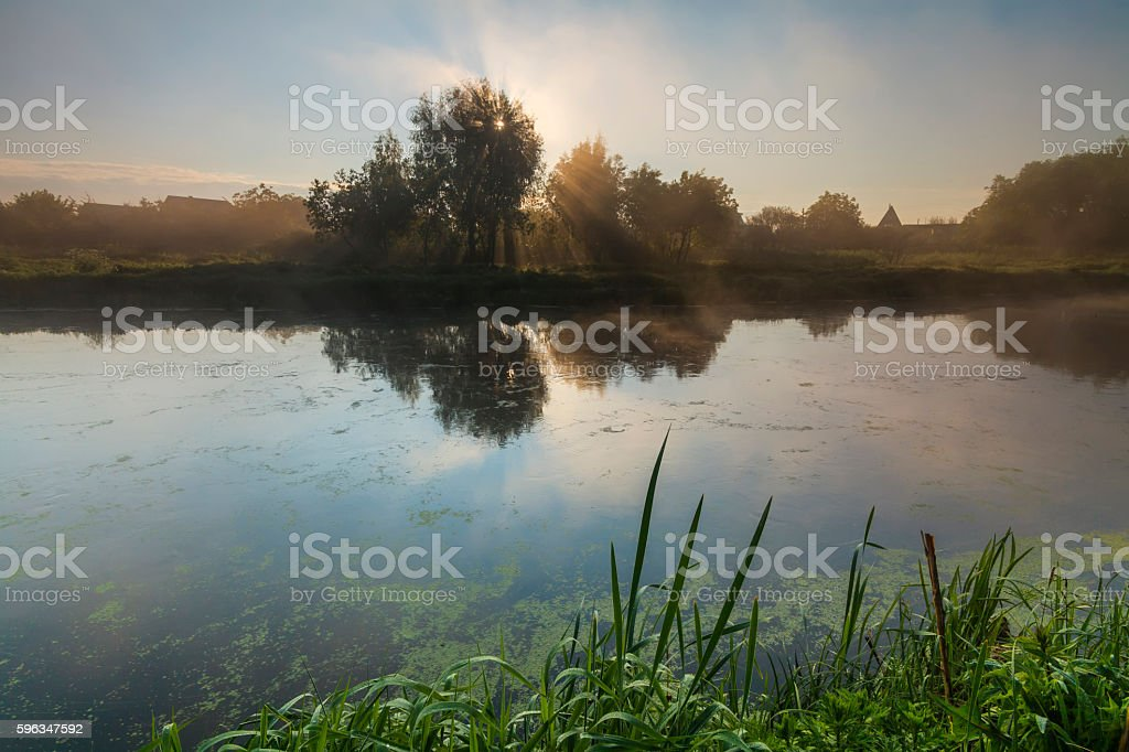 Amazing foggy landscape in the morning sun. royalty-free stock photo