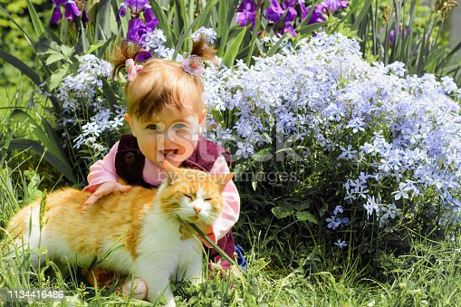 Amazing girl is playing with an ore cat in flowers. Amazing summer demonstrates this beauty