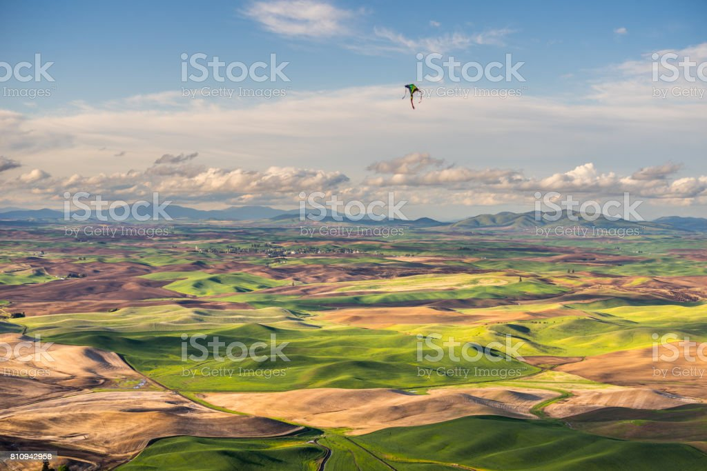 Amazing green hills. Plowed fields, an incredible drawing of the earth. stock photo
