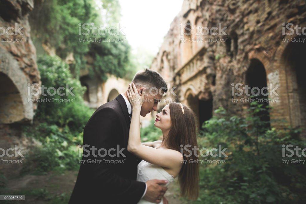 Amazing happy gentle stylish beautiful romantic caucasian couple on the background ancient baroque castle stock photo