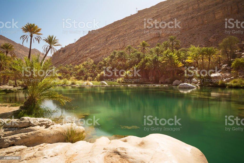 Amazing Lake and oasis with palm trees (Wadi Bani Khalid) in the Omani desert - Zbiór zdjęć royalty-free (Arabia)