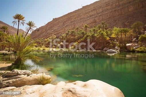 Amazing Lake and oasis with palm trees (Wadi Bani Khalid) in the Omani desert