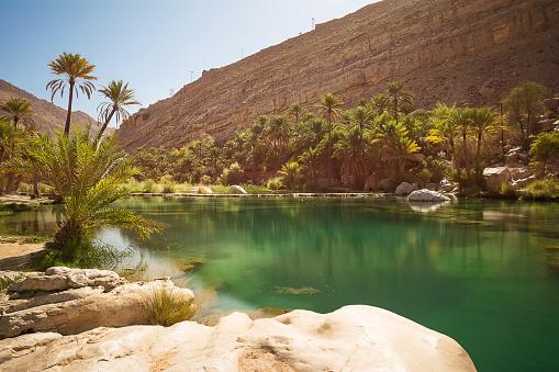 Amazing Lake And Oasis With Palm Trees In The Omani Desert - zdjęcia stockowe i więcej obrazów Arabia