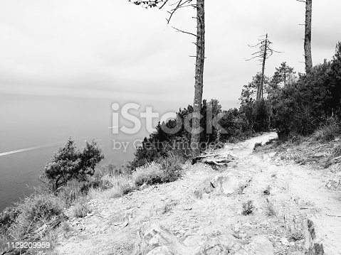 istock Amazing lakes and rivers in black and white background 1129209959