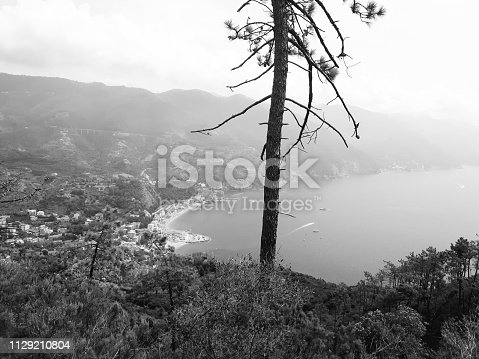 istock Amazing lakes and rivers in black and white background 1129210804