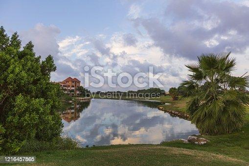 Amazing landscape with green palm tree near a lake on blue sky background. Aruba island.  Beautiful backgrounds.