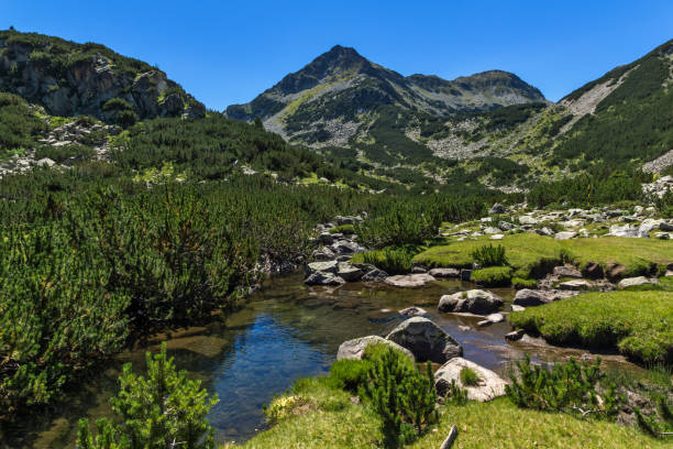 Amazing landscape with Valyavitsa river and Valyavishki chukar peak, Pirin Mountain stock photo