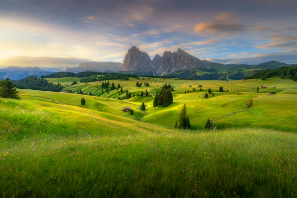 erstaunliche landschaften blick auf grünen hügeln mit blauen sommerhimmel auf sonnenaufgang vom seiser alm-dolomiten, italien. - seiser alm stock-fotos und bilder