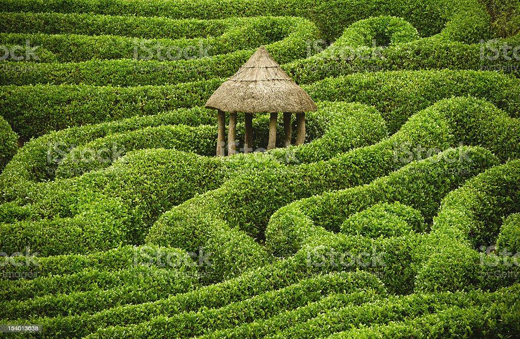 Amazing maze stock photo