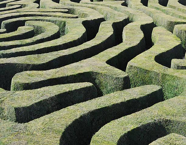"""fantastische """"maze"""" - der geheime garten stock-fotos und bilder"""