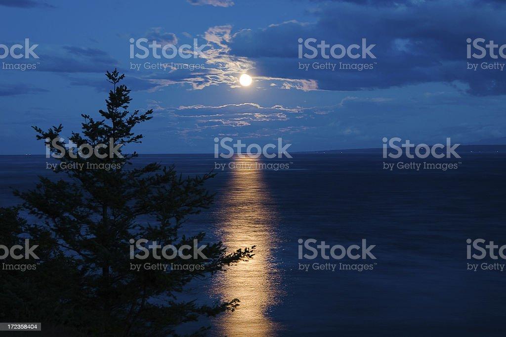 Amazing Moonrise royalty-free stock photo