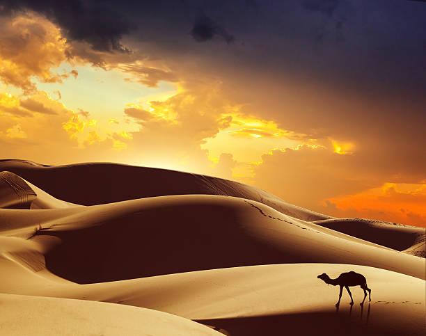 Amazing Morocco stock photo