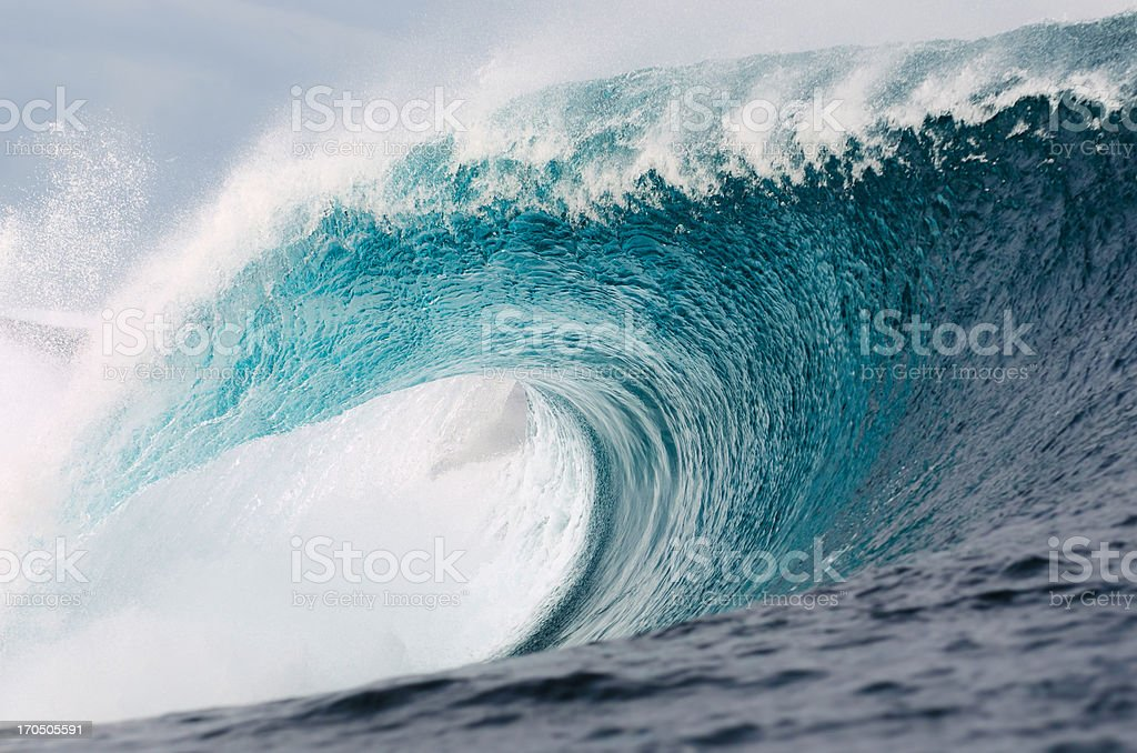 Amazing Nature stock photo