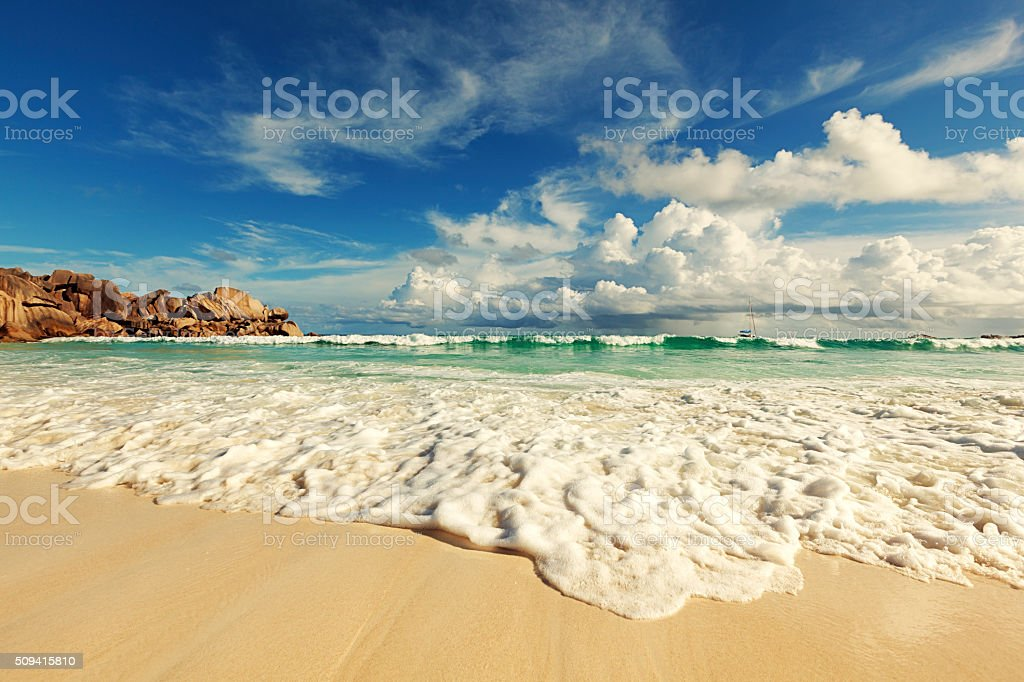 amazing nature seychelles islands stock photo