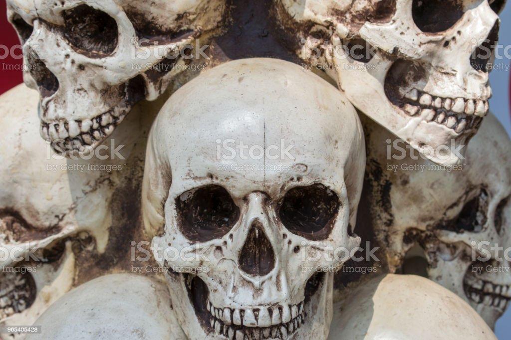 Incroyable de tas de crânes et OS. - Photo de Anatomie libre de droits