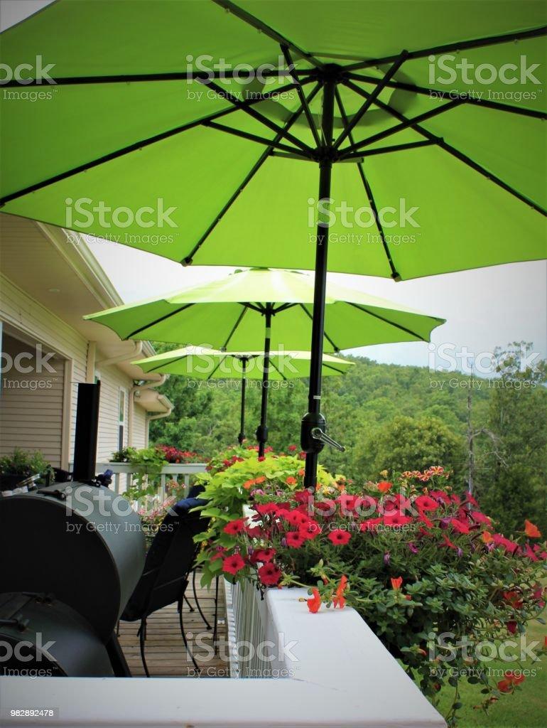 Increíble Terraza Patio Casa Rural Con Una Fila De Cal Verde