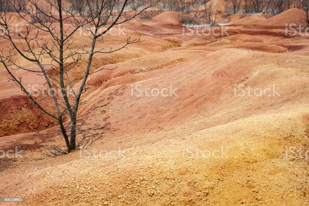 Dépliées étonnantes couleurs près d'un vieux bauxite abandonnée mine en Hongrie - Photo