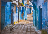 istock Amazing street view of blue city Chefchaouen. Location: Chefchaouen, Morocco 1019399742