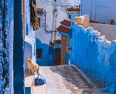 istock Amazing street view of blue city Chefchaouen. Location: Chefchaouen, Morocco, Africa 1125122509