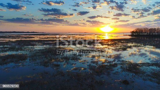 istock Amazing sunrise reflected in marsh waters in Springtime. 965529200