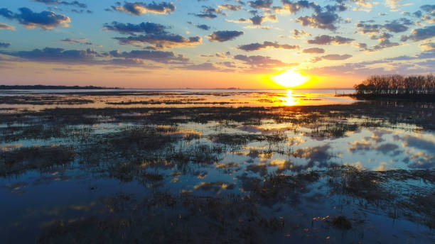 amazing sunrise reflected in marsh waters in springtime. - green bay wisconsin stock photos and pictures
