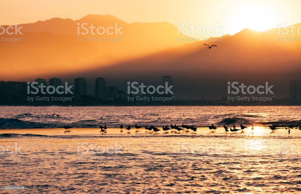 amazing sunrise through the mountains stock photo