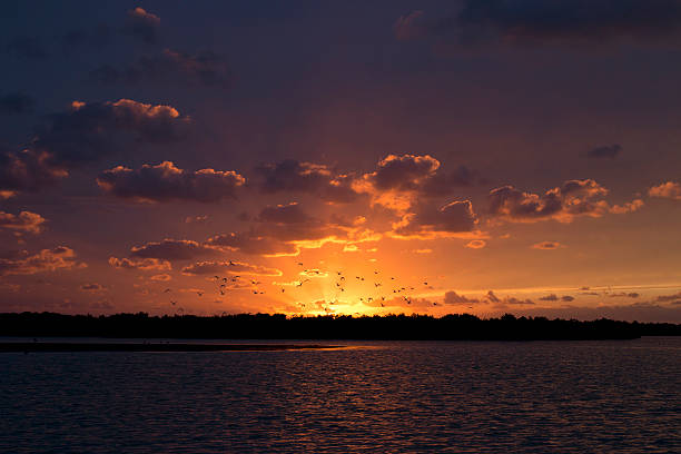 Amazing sunset at Rio Lagartos, Yucatan, Mexico. stock photo