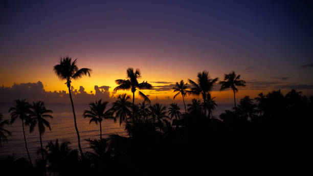 amazing sunset  at the caribbean sea, ocean, Dominican Republic stock photo