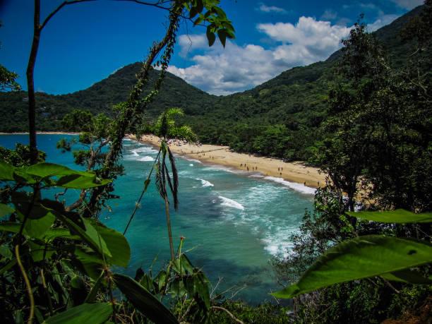 Amazing tropical beach in Brazil