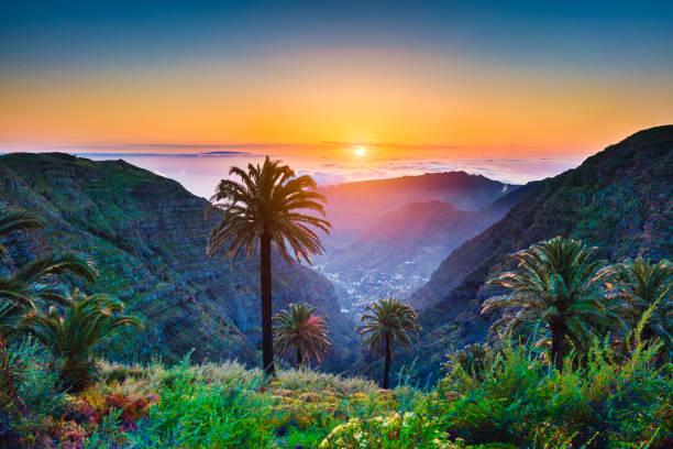 incroyable paysage tropical avec palmiers et les montagnes au coucher du soleil - canari photos et images de collection