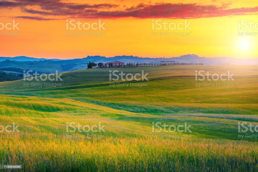 Erstaunliche toskanische Landschaft mit bunten Sonnenuntergangs-und Getreidefeldern, Italien – Foto