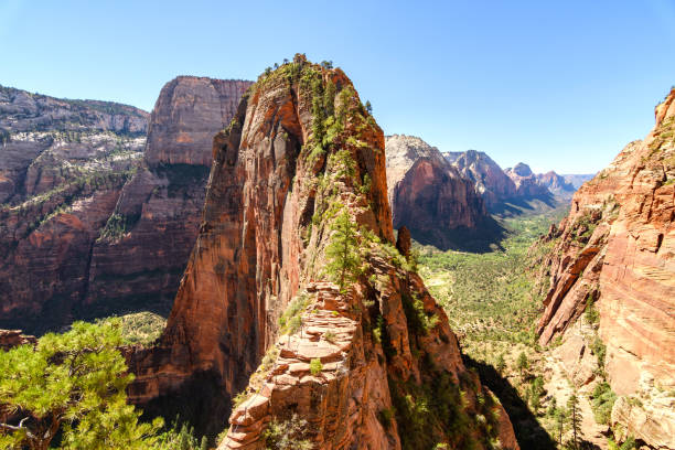 amazing view of angels landing hike in zion national park, utah views to zion national park from angel landing hike zion national park stock pictures, royalty-free photos & images