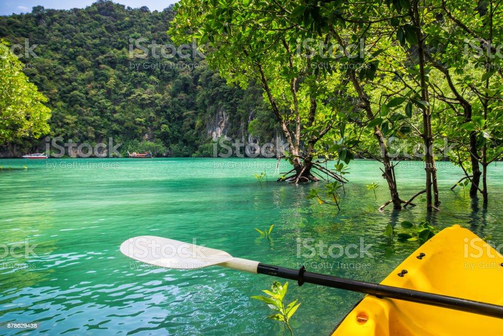 Amazing view of lagoon in Koh Hong island from kayak. Location: Koh Hong island, Krabi, Thailand, Andaman Sea. Artistic picture. Beauty world. stock photo