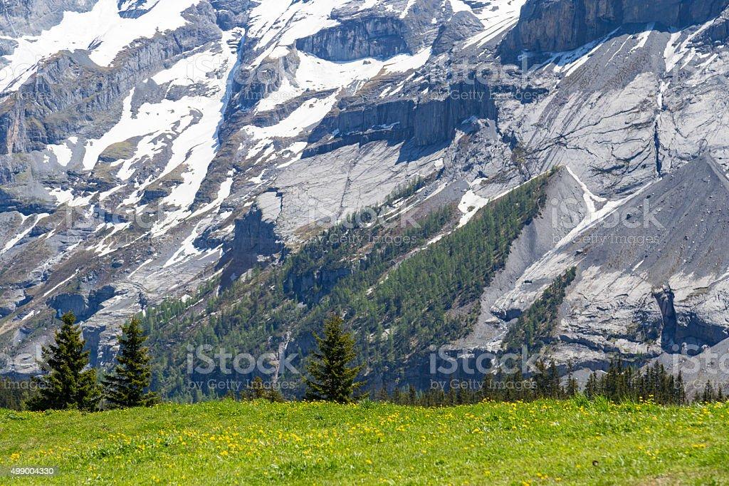 Amazing view of Swiss Alps and meadows near Oeschinensee, Switzerland stock photo