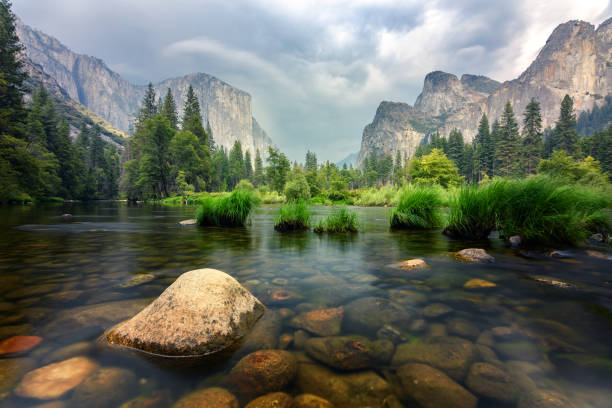 amazing views of el capitan mountain in yosemite valley, usa - national park stock pictures, royalty-free photos & images