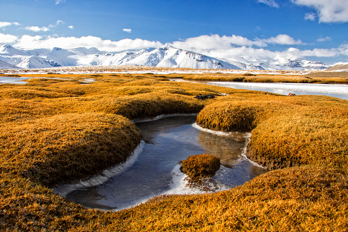 Amazing Winter Landscape Of Frozen Moors And Mountains In Iceland Stock Photo - Download Image Now